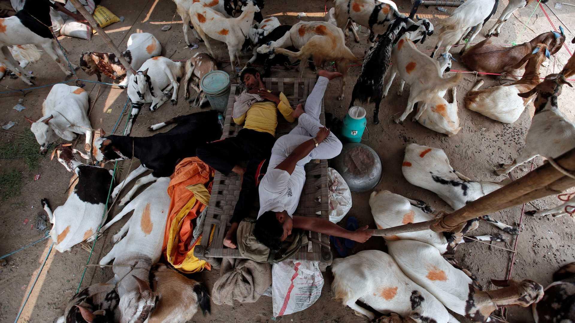 - naom 59a023795f46a - Doze mortos em tumultos no norte da Índia após condenação de guru