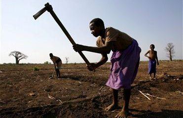 - Africa economia 371x240 - Desemprego é razão para investir na agricultura e pescas em Angola