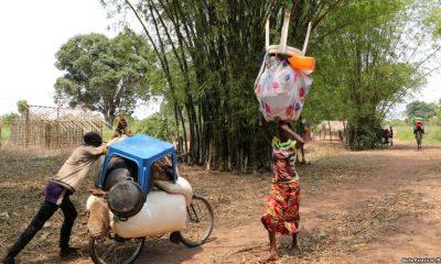 - Imigrantes congoleses que foram expulsos em Outubro de Angola 400x240 - Angola cai duas posição no IDH, ranking mundial de desenvolvimento humano