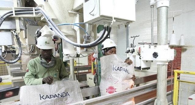 investimentos privados feitos com fundos públicos lesaram o estado em 4,7 milhões de dólares - A  UCAR KAPANDA - Investimentos privados feitos com fundos públicos lesaram o Estado em 4,7 milhões de dólares